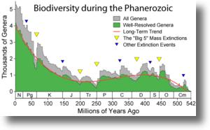 Phanerozoic_biodiversityshadow